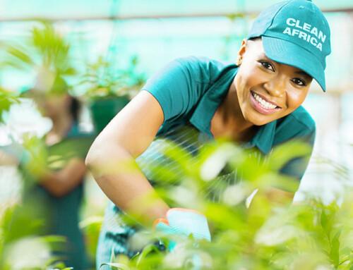 Serviço de Jardinagem na Clean Africa!